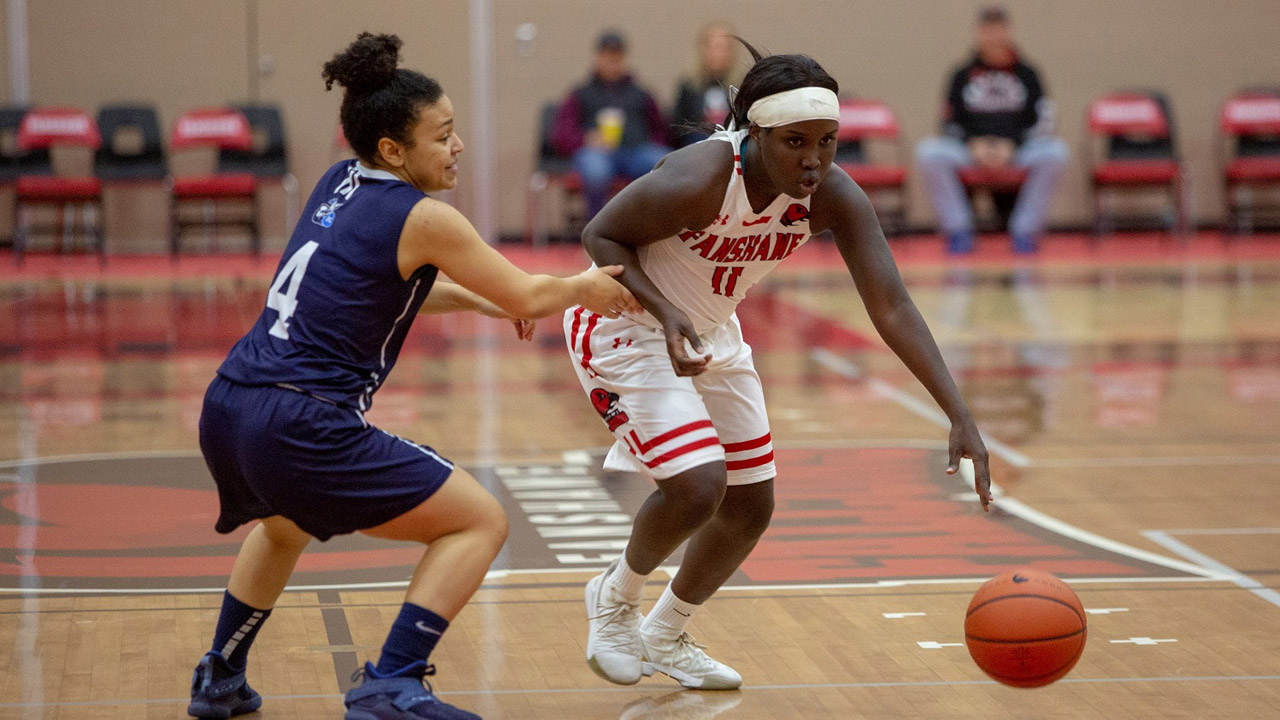 Header image for the article Chuot Angou first Falcon to receive CCAA women's basketball player of the year honour