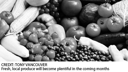 Header image for the article Food for thought: Guide to fresh, local summer food